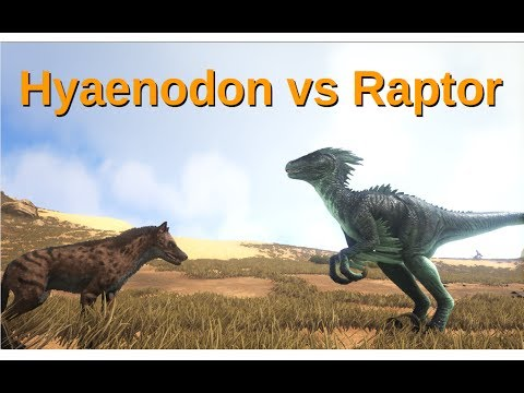 hyaenodon gigas tagged videos on VideoHolder