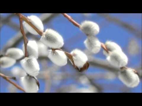 Антонио Вивальди - Зима (современная классика)