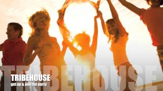 tribehouse - get up & join the party