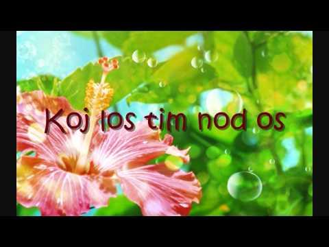 Nkauj Xwb - Tooj Ntshua Nplaim Thoj thumbnail