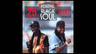 POSITIVE BLACK SOUL :  IT'S ALL LOVE ( PBS 25ANS)
