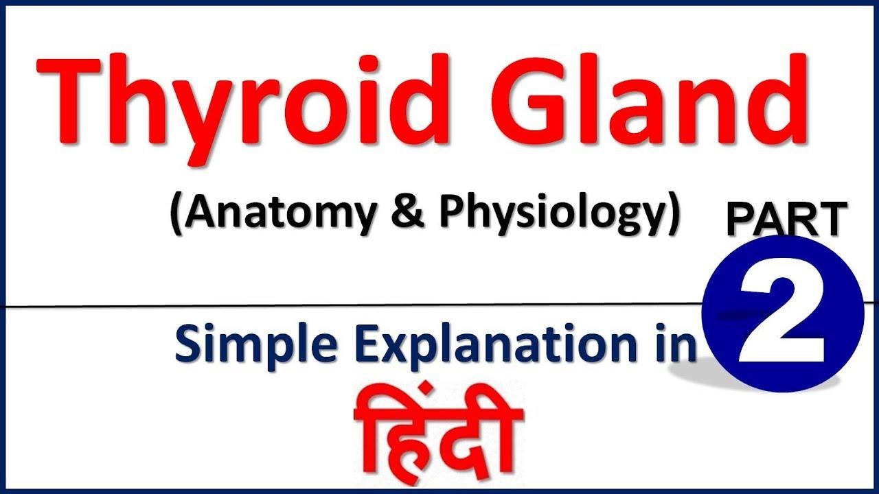 Thyroid Gland Anatomy Physiology In Hindi Part 2 Bhushan