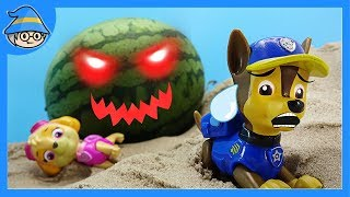 Watermelon ghost came out. The ghost chasing PAW PATROL. | SHIM thumbnail