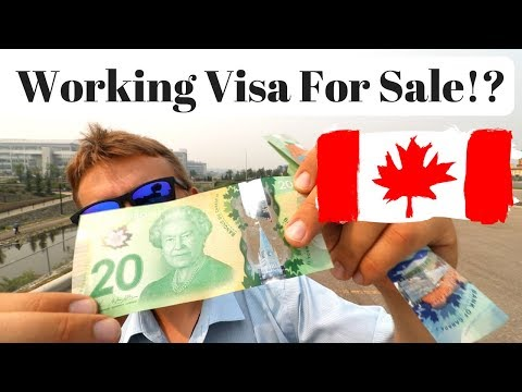 Working Visa For Sale?! LMIA & Work Permit in Canada
