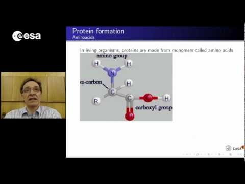 Structures and evolution of proteins