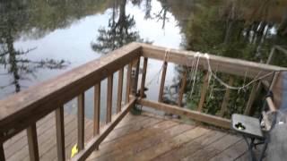 House on the bayou for sale Louisiana