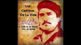 Celso Piña - Los Caminos De La Vida