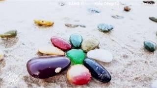 BÃI ĐÁ 7 MÀU Như Ngọc Ở Bình Thuận   Co Thach Beach   Du Lịch Phan Thiết   Kiều Công Tử