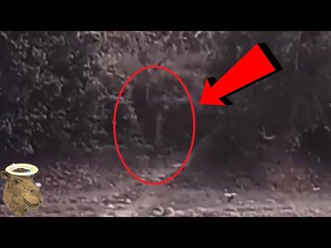 5 Extraterrestres Captados En Cámara Y Vistos En La Vida Real