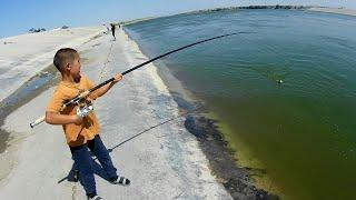Клюет везде Но по разному Рыбалка в трёх местах Сазан Жерех Карась Август 2021 г