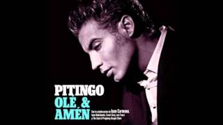 pitingo ole y amen (6 homenaje a chocolate)