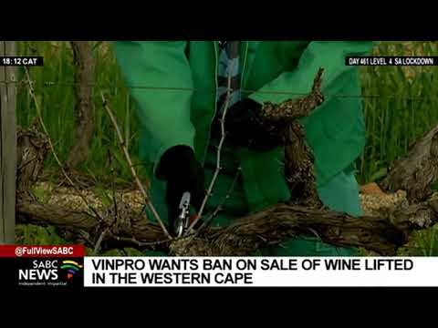 VINPRO goes to court over ban of wine sales in Western Cape