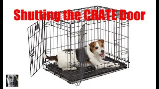 Crate Train Your Dog - Closing the Door - Dog Training Video
