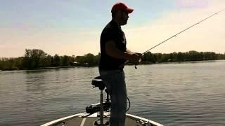 Pêche à la perchaude