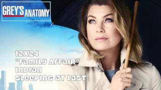 greys anatomy soundtrack indian by sleeping at last 12x24