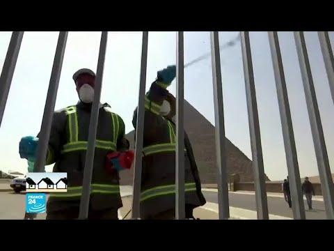 مصر: 120 إصابة جديدة و66 وفاة بفيروس كورونا  - نشر قبل 5 ساعة