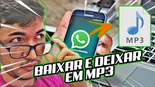 Como baixar audio do WhatsApp Web em mp3