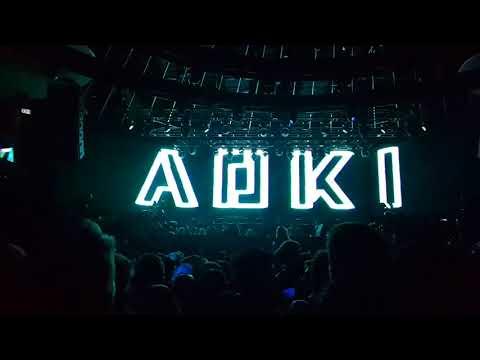 Steve Aoki | Solaris Music Festival 2017