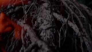"""Divus """"Aureola"""" Album Trailer"""
