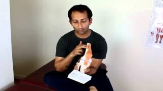 patellar tendonitis massage treatment   manu kalia   video 141   tridoshawellness
