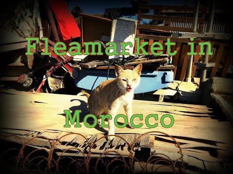 Oddie visits a Fleamarket in Morocco!!