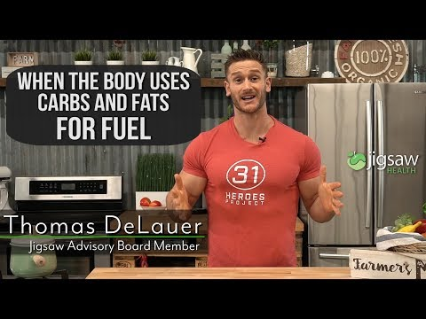 When the body uses Carbs & Fats for Fuel | #ScienceSaturday