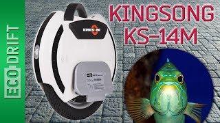 гироборд (моноколесо) KingSong KS14DS 680Wh обзор
