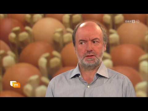 Umweltmediziner Moshammer über Fipronil ORF Heute Mittag