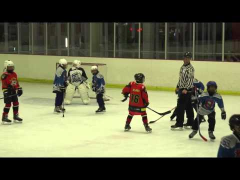 Forest Rats vs Sabres U14 Ice Hockey Match