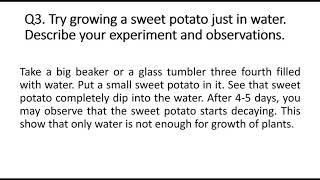 Class 7ll Sciencell Nutrition in Plantsll ch1llNCERT Part2