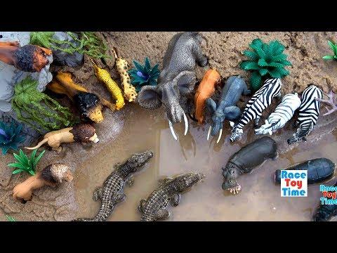 Toy Wild Safari Zoo Animals │Sea Animals Toys Fun Learning Videos For Kids