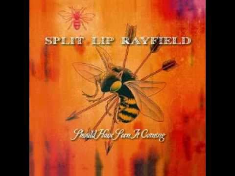 Split Lip Rayfield Just Like A Gillian Welch Song