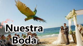 Nuestra Boda - Las Caletas Puerto Vallarta, Jalisco Mexico SERIE BODA #9   GLADYS