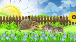 Животные и их детеныши. Развивающий музыкальный мультфильм для малышей / Animals and kids. Наше_всё!