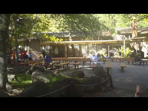 Yosemite Valley Lodge