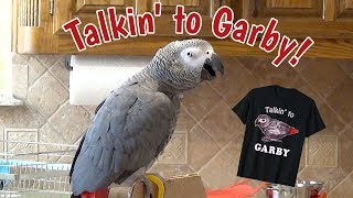 Einstein Parrot is talking to Garby