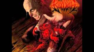 "Bloodbath ""Draped In Disease"" Album: Nightmares Made Flesh"