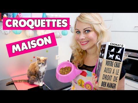 CROQUETTES MAISON POUR CHAT [Recette Cookat] ♡ VIRGINIE FAIT SA CUISINE