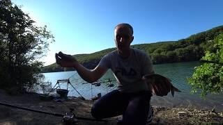 Рыбалка в Крыму.Изобильненское Водохр.ПОКА ЛОВИМ ПЛОТВУ ТОЛСТОЛОБ ПЛАВАЕТ БУКВАЛЬНО ПОД НОГАМИ
