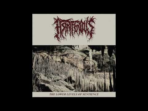 Astriferous - The Lower Levels Of Sentience (2020)