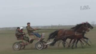 Русская тройка- Райкова 2016  (Лошади-Horse–Animal-racing-конь-смотреть-онлайн-скачки)