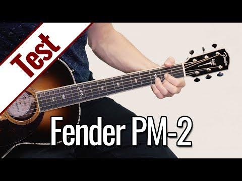 Fender PM-2 | Gitarrentest