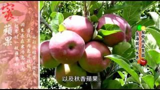 www.twsfood.com 版權所有‧轉仔必究.