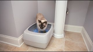 Dual-Fresh Litter Box System Quick Overview