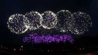 2014 台灣國慶FWsim動畫煙火試放 Taiwan National day FWsim Fireworks test thumbnail