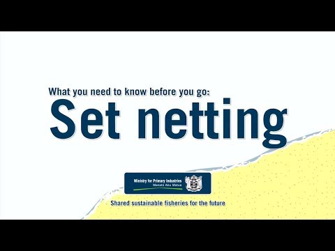 Set Netting – What You Need To Know Before You Go