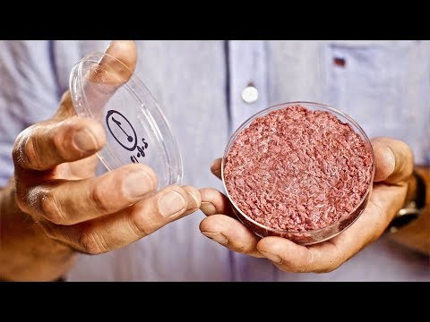 First Company To Lab Grow Meat - Clean & Cultured - Memphis Meats