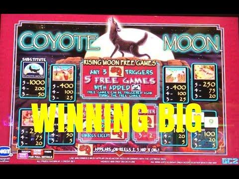 winpalace casino mobile Online