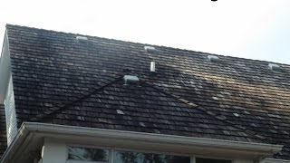 Cedar Roof Cleaning Removing White & Brown Rot Fungi | Sullivan Roof Cleaning