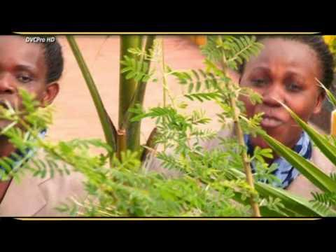 Aleluya Msifuni-Kwaya Ya Mt. Dioni Ssebugwawo Mwanza